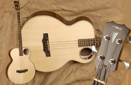 Example of AB49 acoustic Bass guitar
