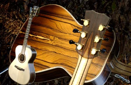 Example of Phoenix acoustic guitar